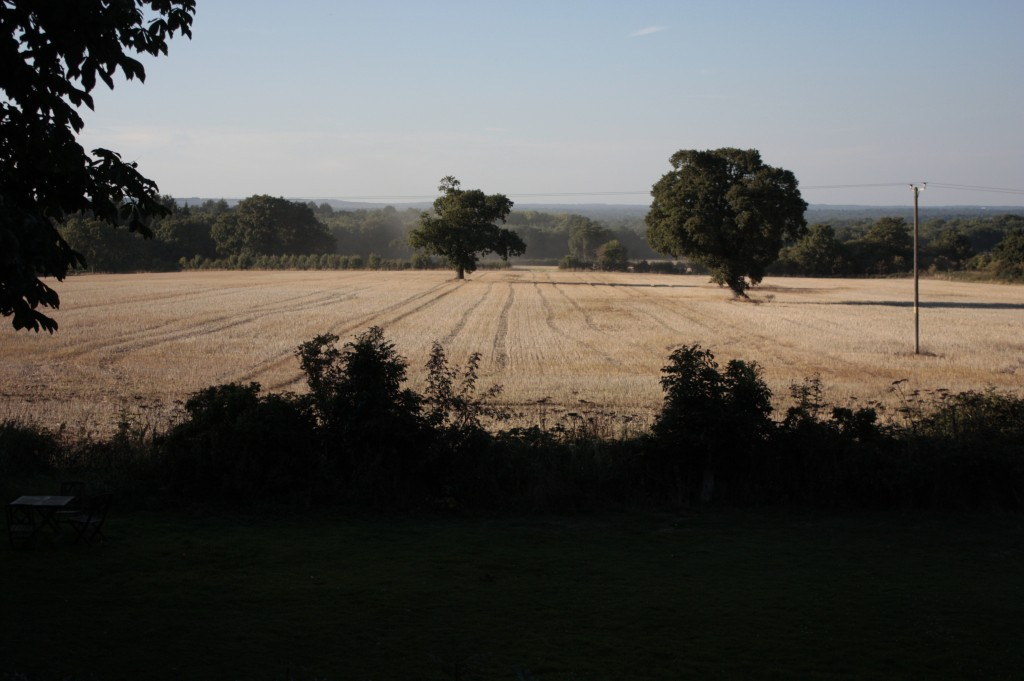 The University of Surrey is planning to build 2000 homes on this open farmland - can they be serious?